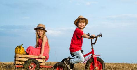Actividades de granja para hacer este verano en familia